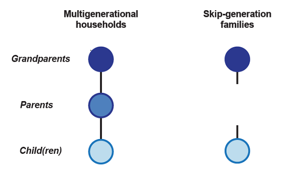 Figure 4: Multigenerational households and skip-generation families